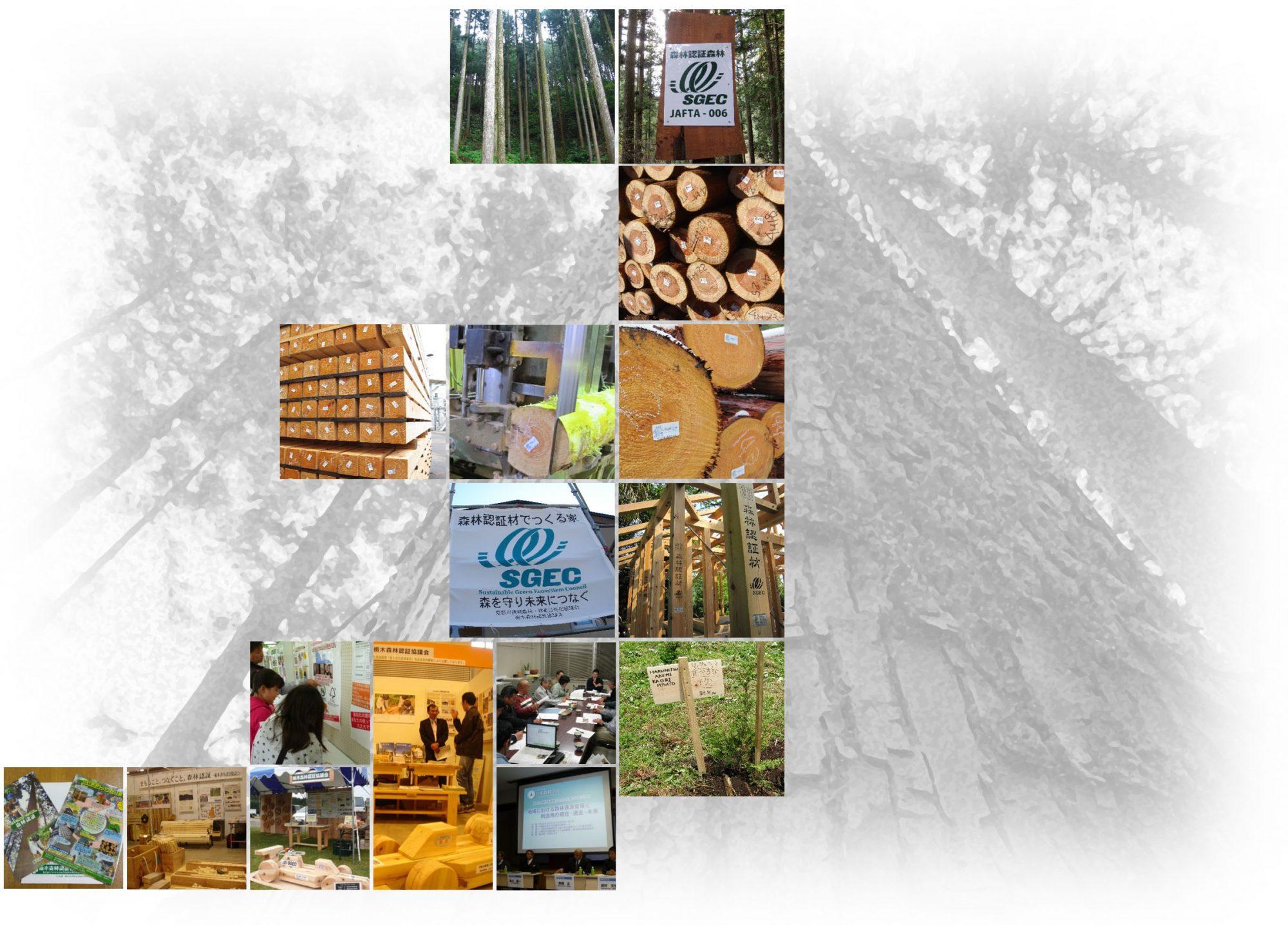 栃木森林認証協議会
